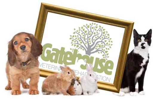 Gatehouse Vet Physio